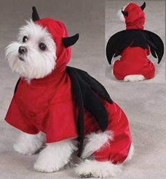 Haute Howl-o-ween Costumes