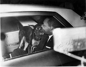 mlk-and-dog