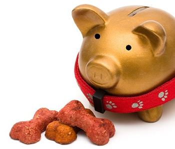 saving money on pet food