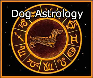 dog horoscope