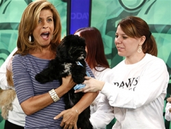 Today's Hoda Kotb Adopts from PAWS Chicago