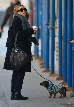 Ashley Olsen: Saturday Stroll with the Dog