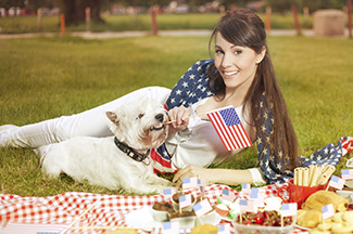 dog memorial day safety